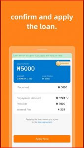 How does ForNaira loan Work